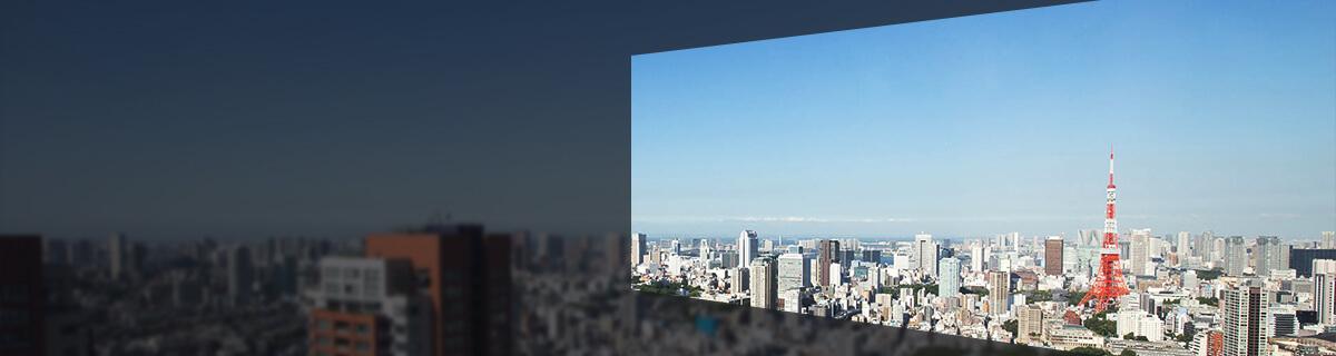 オフィスから見える景色(昼)の写真